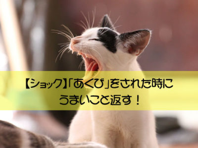 【ショック】「あくび」をされた時にうまいこと返す!